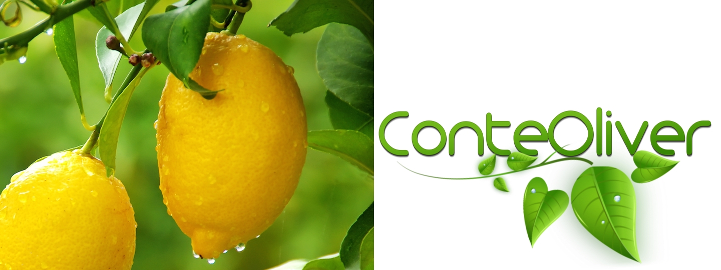 olii-essenziali-limone-header-article