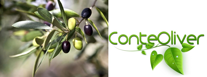 Conte Oliver - olio extravergine di oliva- header-article