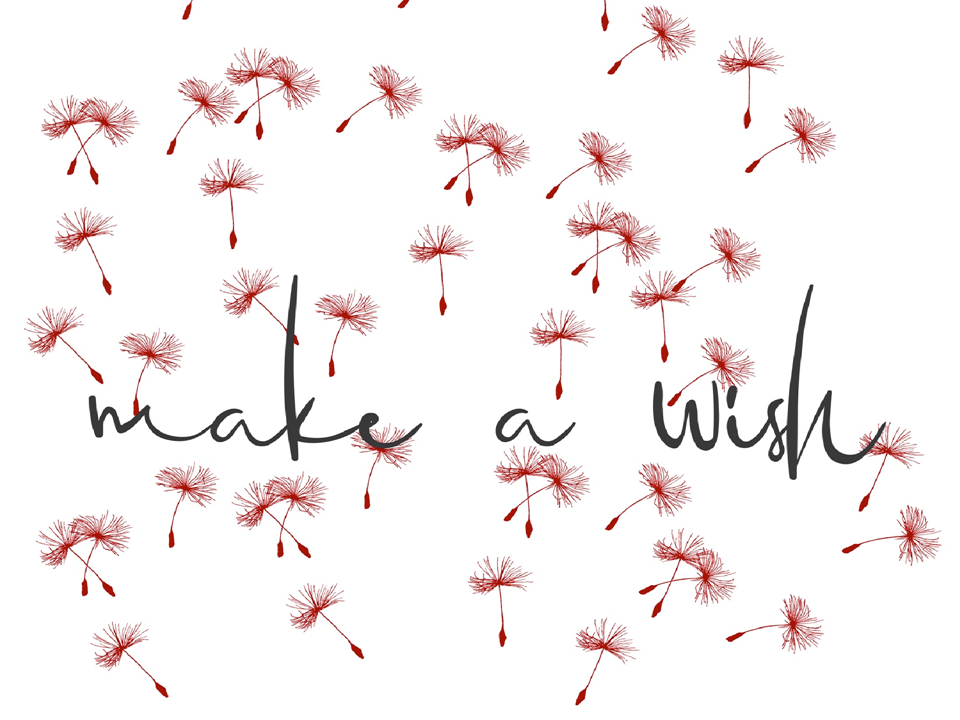 logo make a wish